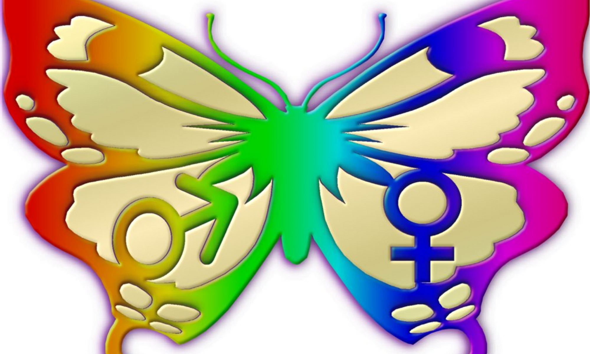 cropped-Butterfly-1.png